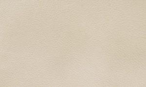 Anilin laeder nature 1036 Silk Grey 630x375